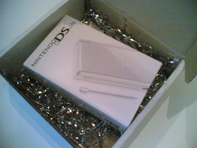 Inside the DS Lite package